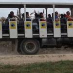 לטייל ברכב ספארי – שלושה מסלולים בהתאם לעונות השנה